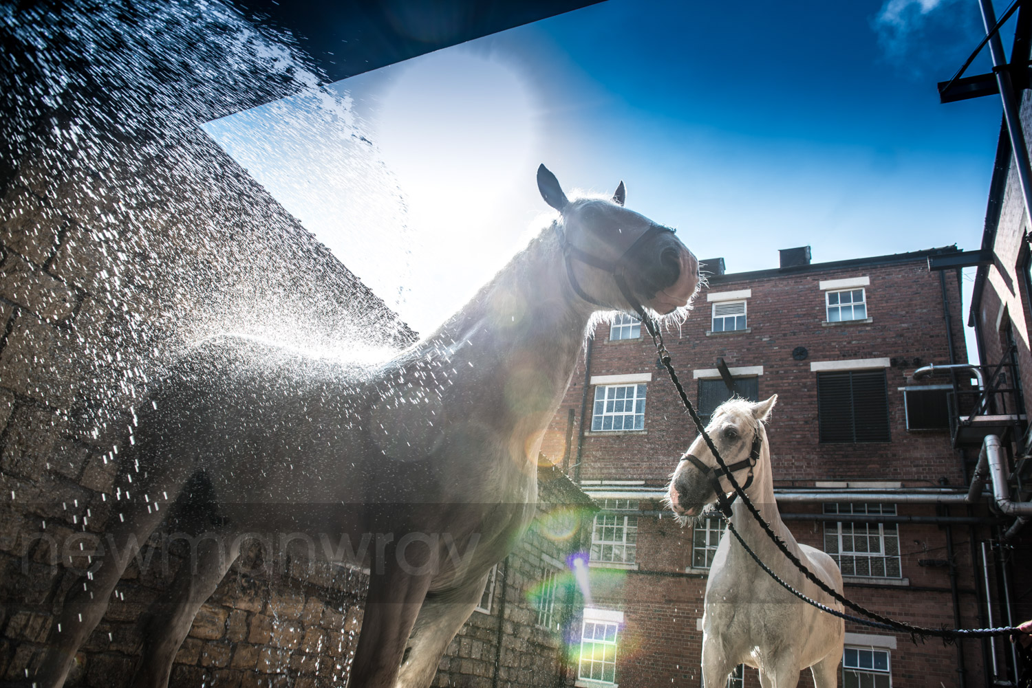 tadcaster_advertising_photography-61