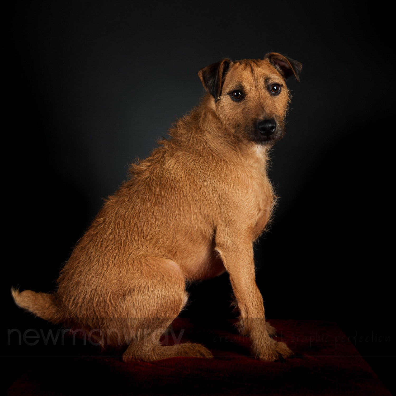 tadcaster_portrait_photography-68